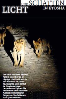 Namibia: Licht und Schatten in Etosha
